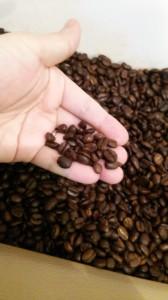 コーヒー豆のディスプレイ