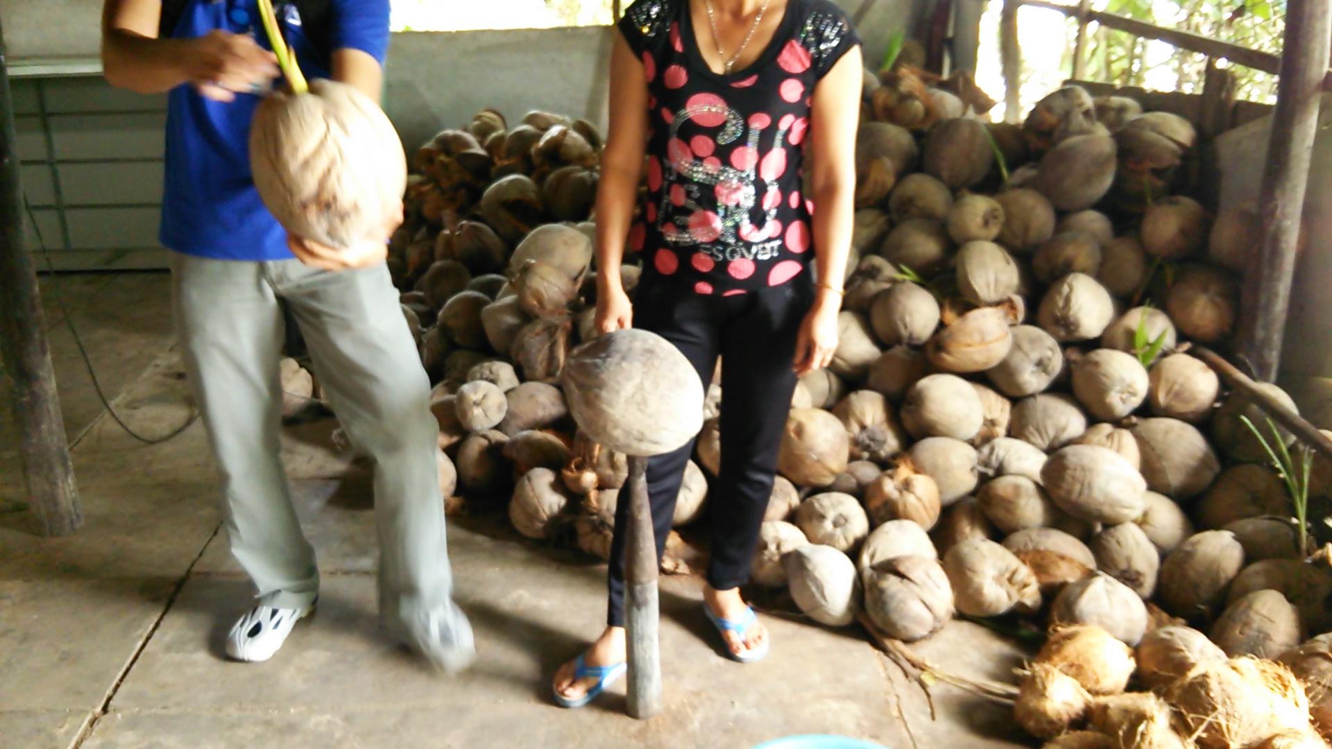 メコン川クルーズ~椰子の実とココナッツ~