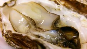 宮島の牡蠣
